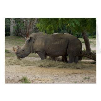Rhinoceros Note or Greeting Card