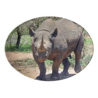 rhinoceros porcelain serving platter
