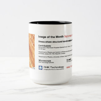 RHK Technology - Sept. 2012 IOM Coffee Mug