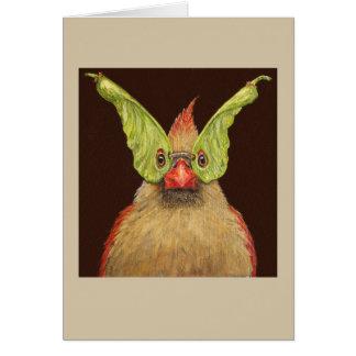 Rhoda the masked cardinal card
