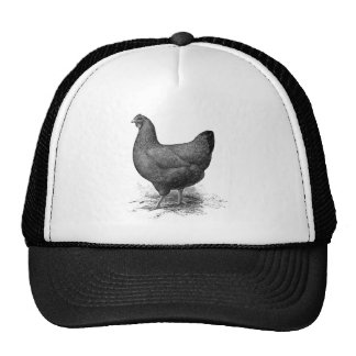 rhode island red hen trucker hat