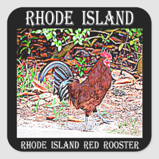 Rhode Island Red Rooster Square Sticker