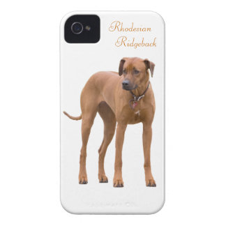 Rhodesian Ridgeback dog beautiful photo, gift Case-Mate iPhone 4 Case