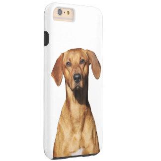 Rhodesian Ridgeback dog beautiful photo portrait Tough iPhone 6 Plus Case