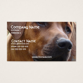 Rhodesian Ridgeback Dog Business Card
