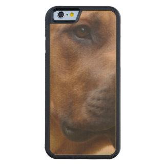 Rhodesian Ridgeback Dog Maple iPhone 6 Bumper Case