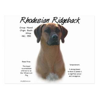 Rhodesian Ridgeback History Design Postcard