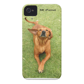 Rhodesian Ridgeback iPhone case