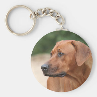 Rhodesian Ridgeback key-ring Keychain