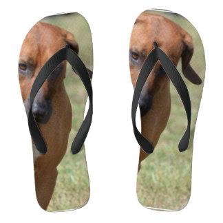 Rhodesian Ridgeback Prancing Flip Flops