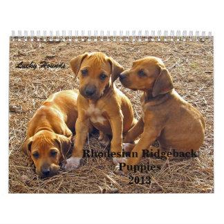 Rhodesian Ridgeback Puppies 2013 Wall Calendar