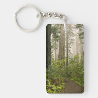 Rhododendron blooming among the Coast Redwoods / Double-Sided Rectangular Acrylic Keychain