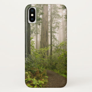 Rhododendron blooming among the Coast Redwoods / iPhone X Case