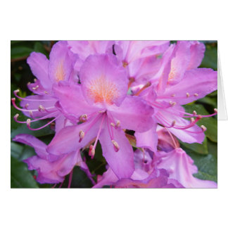 Rhododendron Flower Birthday Card