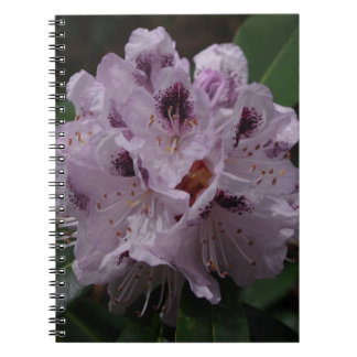 Rhododendron Flower Notebook