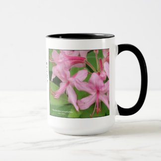 Rhododendron prinophyllum, early azalea mug