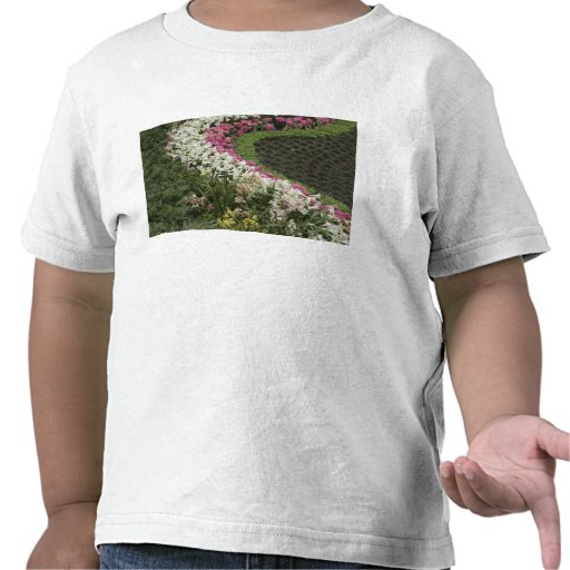 Rhododendron (Rhododendron catawbiense) Heath T Shirts