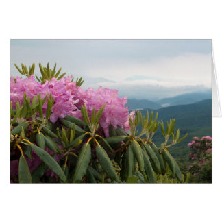 Rhododendrons Card