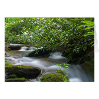 Rhododendrons on the Creek Card