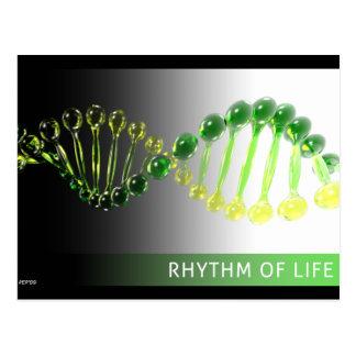 Rhythm of Life Postcard