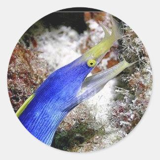 Ribbon Eel Classic Round Sticker