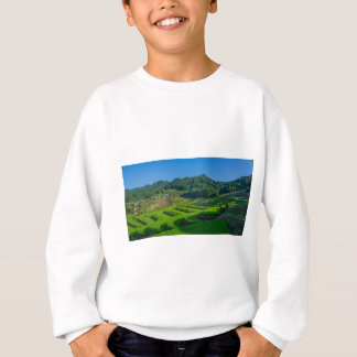 Rice Paddy Field in Japan Sweatshirt