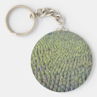 Rice paddy, Indonesia Keychain