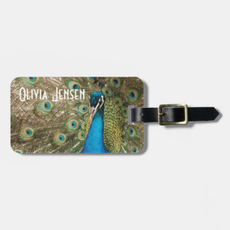 Rich Color Photo of Peacock Bird Luggage Tag