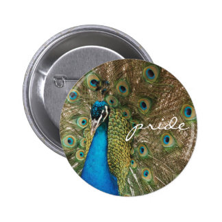 "Rich Color Photo of Peacock with ""Pride"" Message 2 Inch Round Button"