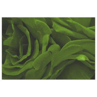 Rich olive green velvety roses flower photo tissue paper