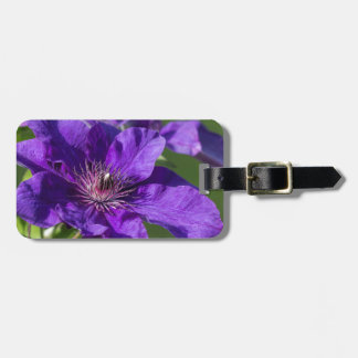 Rich Purple Clematis Blossom Macro Bag Tag