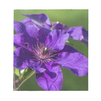 Rich Purple Clematis Blossom Macro Notepad