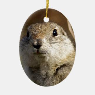 Richardsons Ground Squirrel, aka, Prairie Gopher Ceramic Ornament