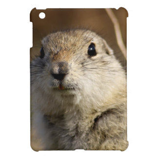 Richardsons Ground Squirrel, aka, Prairie Gopher Cover For The iPad Mini