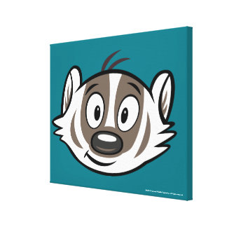 Ricky Raccoon   Boomer Badger Face Canvas Print