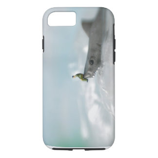 Ride the Shark iPhone 8/7 Case