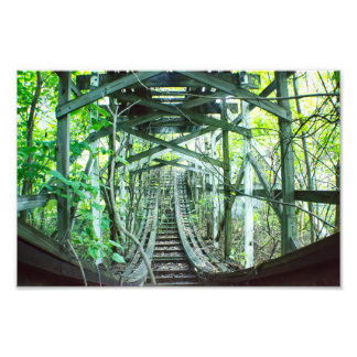 Ride through the jungle photo print