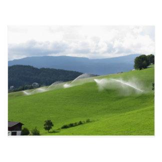 Ridge on alpine pasture with grass sprinklers postcard