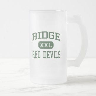Ridge - Red Devils - High - Basking Ridge Frosted Glass Beer Mug