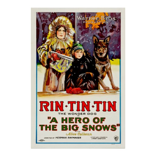 Rin Tin Tin - The Wonder Dog Posters