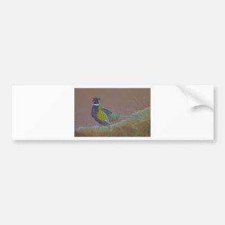 Ring Neck Pheasant Wild Bird Bumper Sticker