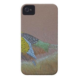Ring Neck Pheasant Wild Bird iPhone 4 Covers