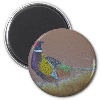 Ring Neck Pheasant Wild Bird Magnet