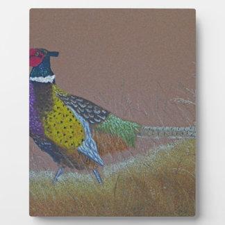 Ring Neck Pheasant Wild Bird Plaque