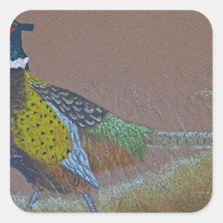 Ring Neck Pheasant Wild Bird Square Sticker