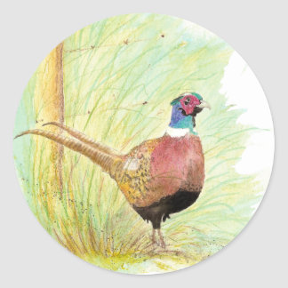 Ring Necked Pheasant Bird, Wildlife, Nature Classic Round Sticker