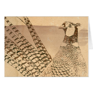 Ring-necked Pheasant Note Card