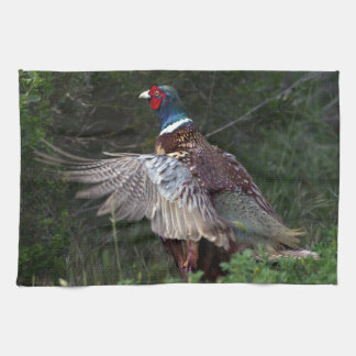 Ring Necked Pheasant Towels