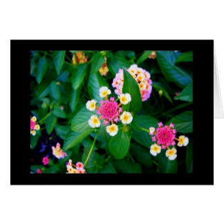 Ring of Flowers Greeting Card