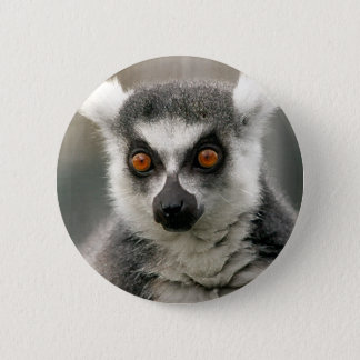 ring tail lemur 2 inch round button